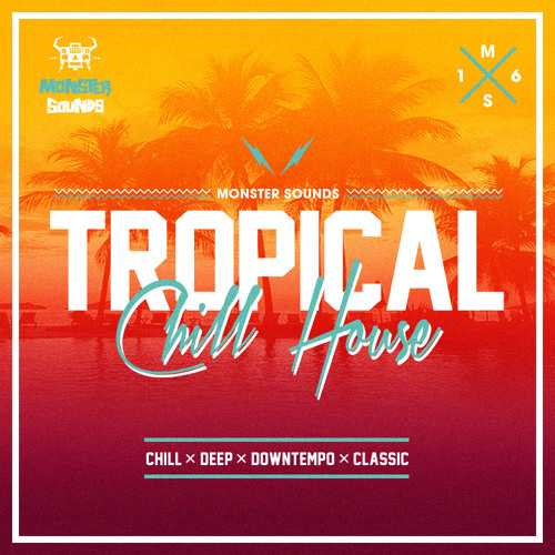 Tropical Chill House MULTiFORMAT FANTASTiC   Images From Magesy® R Evolution™