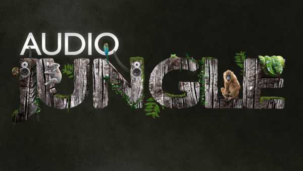 AudioJungle Bundle 2016 MP3 WAV   Images From Magesy® R Evolution™