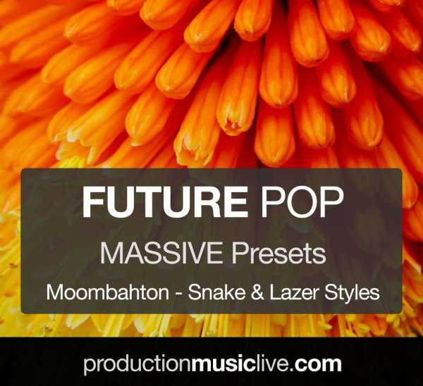 Future Pop Moombahton MASSiVE NMSV TZ Group | Images From Magesy® R Evolution™
