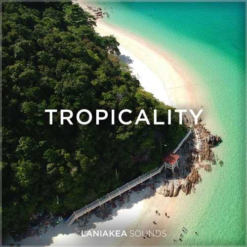 Tropicality WAV DiSCOVER | Images From Magesy® R Evolution™