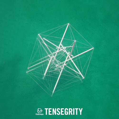 Tensegrity WAV | Images From Magesy® R Evolution™