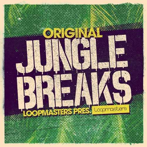 Original Jungle Breaks MULTiFORMAT | Images From Magesy® R Evolution™