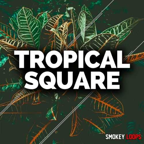 Tropical Square WAV MiDi | Images From Magesy® R Evolution™