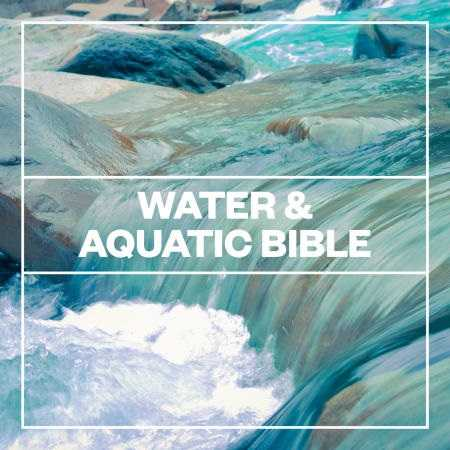 Water and Aquatic Bible WAV | Images From Magesy® R Evolution™