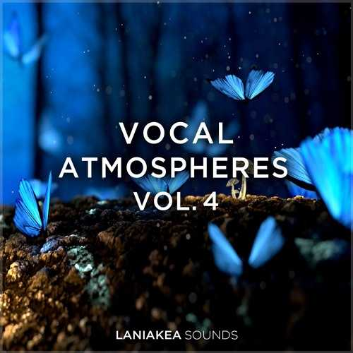 Vocal Atmospheres Vol.4 WAV HAPPY NEW YEAR | Images From Magesy® R Evolution™