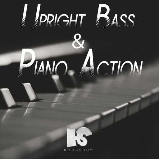 Upright Bass and Piano Action WAV | Images From Magesy® R Evolution™